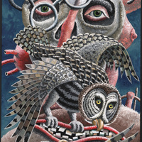 Morgan Bulkeley'swork, Book: Great-gray Owl, Barred Owl Mask